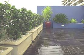 Small Picture the balcony small space garden design Potted Landscapes sydney