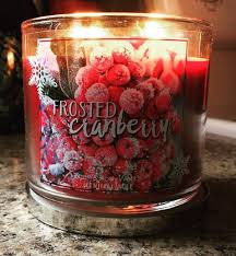 frosted cranberry candle bath and body works bath body works frosted cranberry scented candle 1 candle frenzy