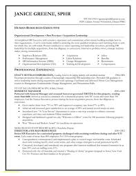 Lovely Beginners Resume Template Free Download Ats Friendly Resume