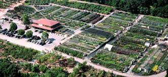 garden centers in maryland. Simple Maryland Aerial View Of Sun Nurseries On Garden Centers In Maryland N