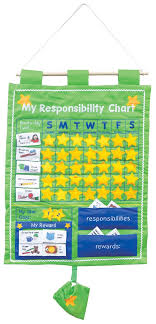 Bright Child My Responsibility Chart