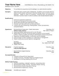 Professional Resume Formatting With Examples Work Skills For A