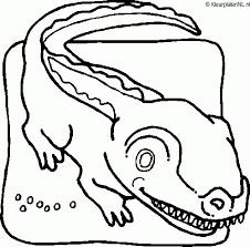 Krokodil Kleurplaten Kleurennet