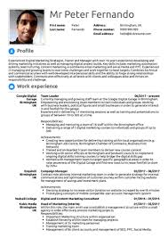 Resumes With Photos How To Write A Professional Summary On A Resume Examples