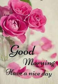 hi dear good morning have