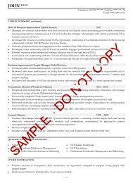 Fmcg Resume Format Business Development Manager Job Description
