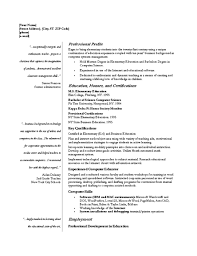 Resume Templates For It Professionals Resume Templates For It