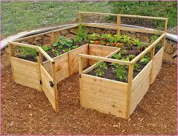 raised vegetable garden beds kits