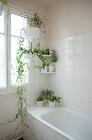 Small bathrooms can bring a lot of problems and your thoughts around design will often need to change accordingly. 130 Plants Bathroom Ideas Plants Bathroom Plants House Design