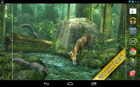 Forest HD V16 Unlocked Live Wallpaper Apk Free Download  APK Full Hd Live Wallpaper For Android Free Download