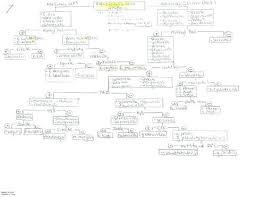 complex process essay drafting