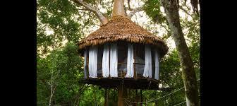 Image Cool Treehouse Nine Serena Treehouse Lodge Treehouses Treehouse Lodge