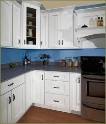 Kitchen Cabinets With Doors Paint Kitchen Cabinets On Kitchen Cabinet Doors With Lovely