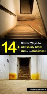 14 clever ways to get musty smell out