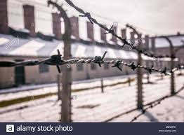 barbed wire fence concentration camp. Delighful Concentration Auschwitz  Oswiecim Poland  02152018 Barbed Wire Fence Around A Concentration  Camp Intended Wire Fence Concentration Camp C