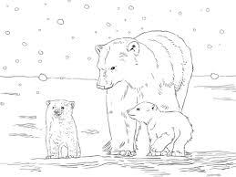 Ijsbeer Moeder Met Twee Jongen Kleurplaat Gratis Kleurplaten Printen