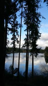 Round Table Federal Way 17 Best Ideas About Federal Parks On Pinterest Bus Times Near Me