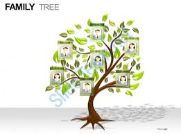 tree in powerpoint family tree powerpoint presentation slides powerpoint slide