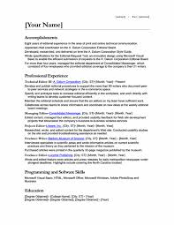 Resume Example Different Positions Same Company Resume Ixiplay