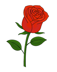 Drawing Of A Rose Hashtag Bg