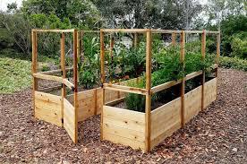 garden deer fence raised garden bed