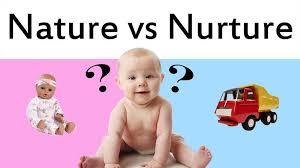 the nature nurture debate psychology essay nature nurture debate nature vs nurture essay essays 1868271