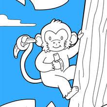Monitos Tiernos Para Colorear Dibujos Para Colorear Animales Es Hellokids Com