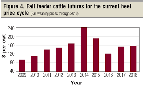 2019 Marketing Projections For Your 2018 Calf Crop Beef