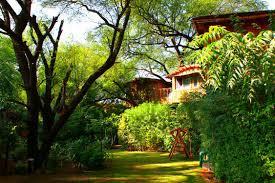 luxury tree house resort. Tree House Resort Jaipur - 5 Star Luxury Bhiwadi Hotels In DLF City Phase II Gurgaon Click.in