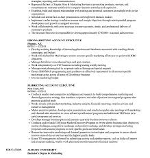 Functional Resume Sample From Free Executive Resume Templates Jospar