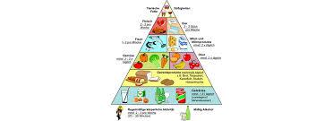Ernährung für abnehmen und muskelaufbau