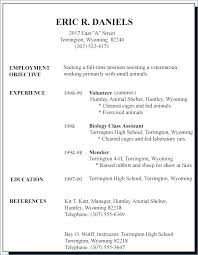 Examples Of Resumes For High School Students Extraordinary High Gorgeous High School Student Resume Examples