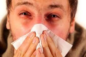 Kami berharap mereka juga akan membantu anda. 9 Cara Mengatasi Hidung Tersumbat Tanpa Obat
