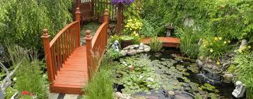 garden pond supplies. Garden Pond Supplies T