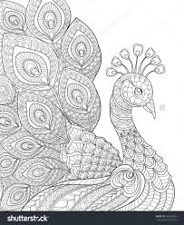 20 Abstract Adult Coloring Page Peacock Ideas And Designs