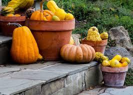 Fall Gardening Checklist How To Winterize Your YardFall Gardening
