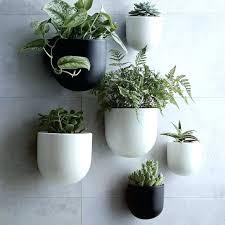 wall mounted plant pot terrarium design pots hanging planters indoor ceramic white plastic flower holder m wall flower pots mounted