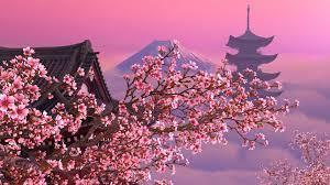 Blooming Sakura 3D Screensaver 1.1 ...