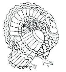 turkey color pages preschool free coloring pages turkey coloring pages turkey to color free printable free
