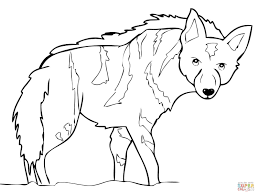 Small Picture Aardwolf from Africa coloring page Free Printable Coloring Pages