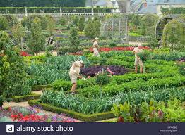Kitchen Gardens France Gardens Of The Castle Of Villandry The Gardeners In The