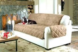 couch covers for dogs couch for dogs couch cover dogs best couch covers for pets photo 2 of 9 charming best leather couch leather couch protector dogs couch