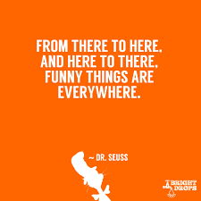 Doctor Seuss Quotes 41 Awesome 24 Dr Seuss Quotes That Can Change The World Bright Drops