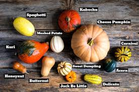 Pumpkin Varieties Chart Know Your Squash How They Look How They Cook The New