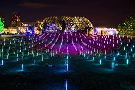 luminosity lighting milwaukee. blossoms of light luminosity lighting milwaukee