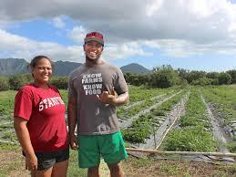 Hawaii teen farm programs