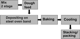 The Biscuits Sciencedirect