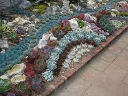 Small Picture 84 best Succulent Garden Ideas images on Pinterest Succulents