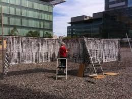 Jeanne Williamson Outdoor Art Installation Observations