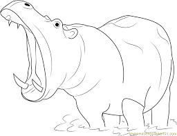 Small Picture Hippopotamus Open Mouth Coloring Page Free Hippopotamus Coloring
